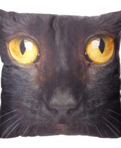 Fekete macska párna – 50 cm