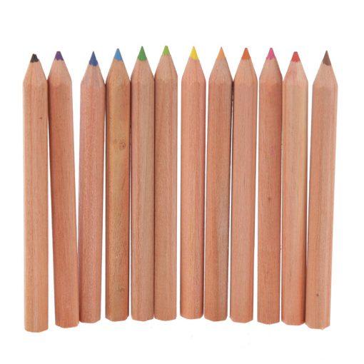 Színes ceruzák cicás tokban