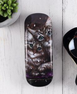 Szemüvegtok édes cicákkal